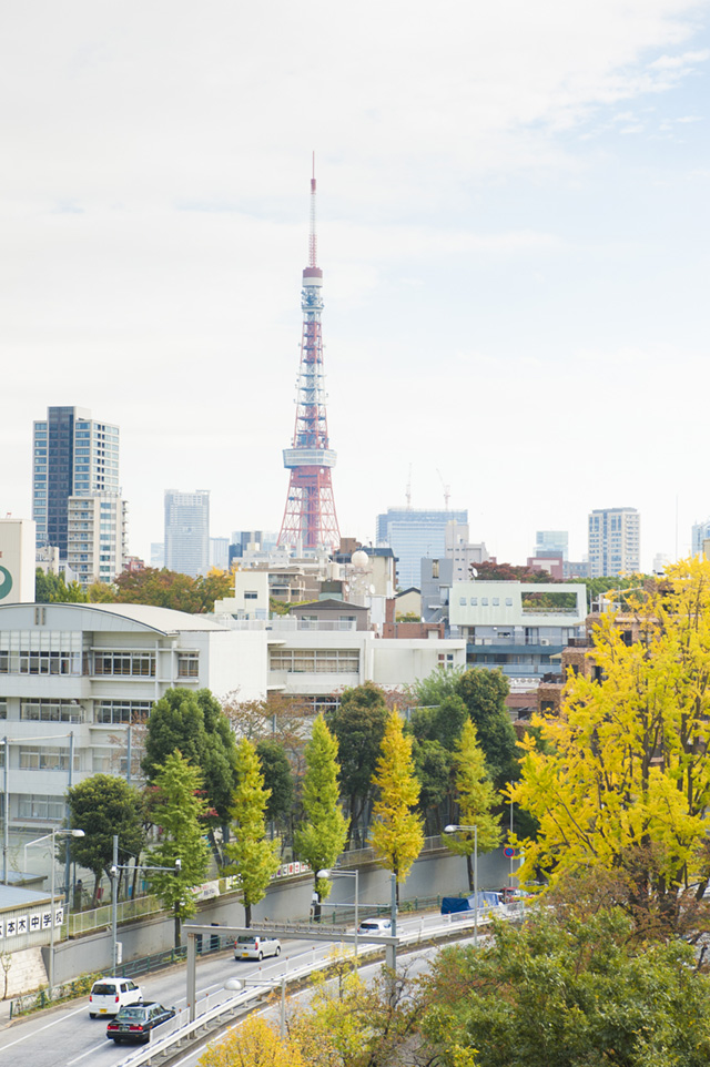 六本木ヒルズ ヒルサイド 東京タワー