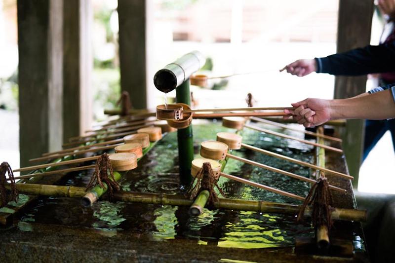弥彦村の彌彦神社|新潟県