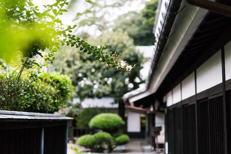 日置市の薩摩焼の400年をめぐる「時の旅」 鹿児島県