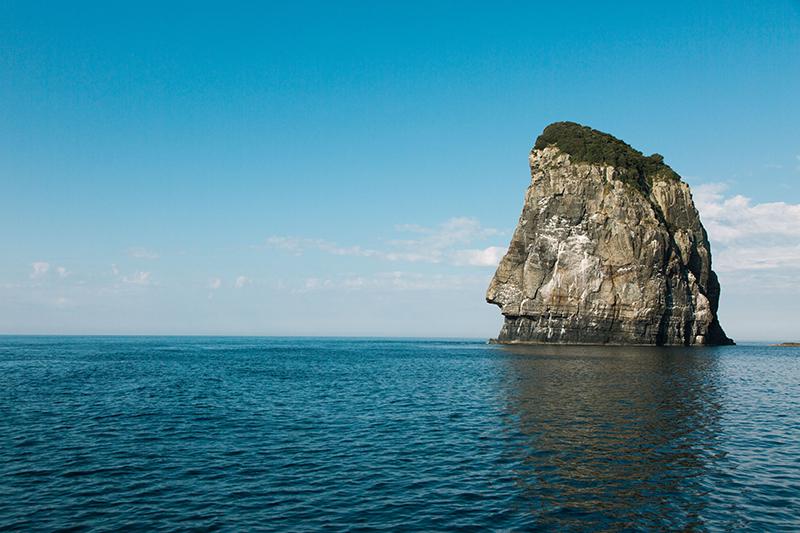 鹿島断崖、コガミアイ、壁立