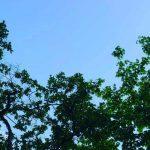 いい時間帯——藤原ヒロシの連載「INSTANT FLOW」#7